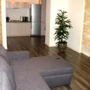 1-bedroom Odessa apartment #2-040